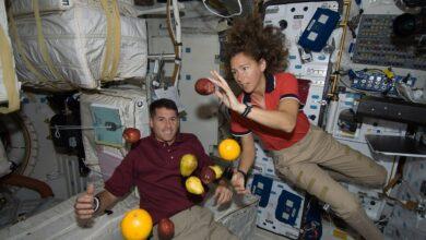 Photo of AAA Astronauti cercasi per quarantena volontaria