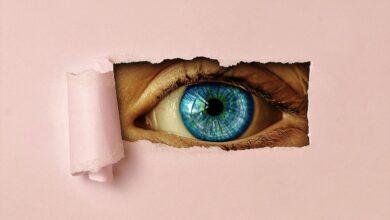Photo of Su cosa vigila la vigilanza? Il parere del Garante per il trattamento dei dati
