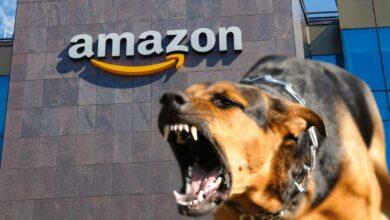 Photo of Per favore non credete alla favoletta della felice magazziniera di Amazon!